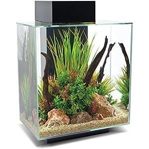 Fluval Edge 12-gallon Aquarium Kit