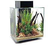 Fluval Edge Aquarium Kit, 12 Gallons, Black