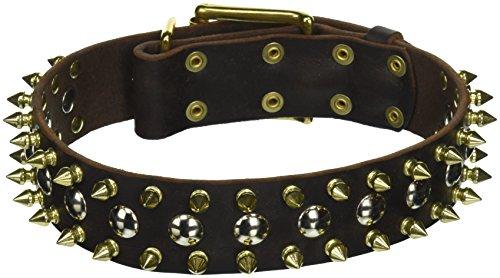 Dean & Tyler Golden Spike Dog Collar with Spikes/Studs/Br...