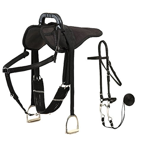 Colorado Saddlery The English Natural Ride Package