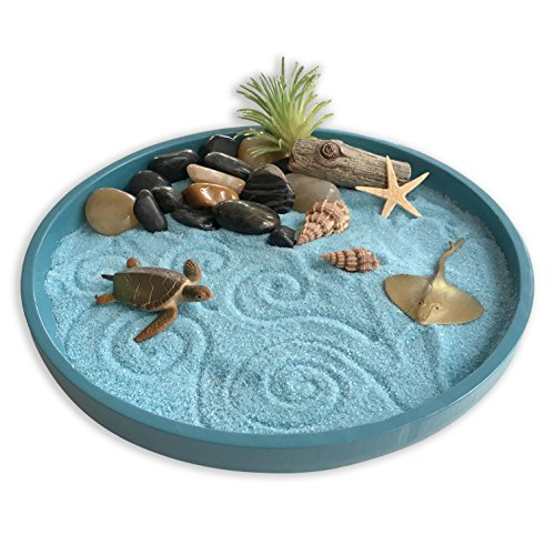 Mini Zen Garden Sea Life A Day at The Ocean Desktop Sandbox for Meditation and Relaxation