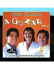Música de Ecuador: A Gozar 29 Exitos 2