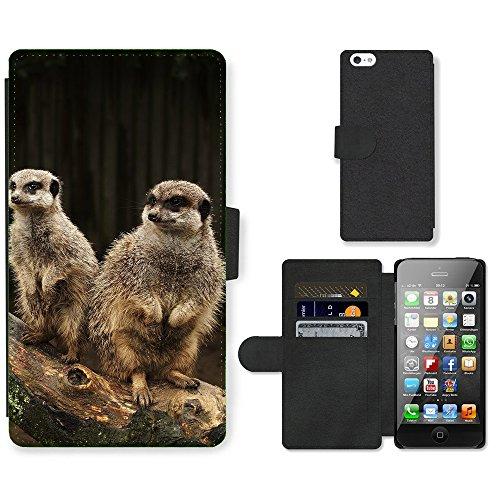 PU Leder Wallet Case Folio Schutzhülle // V00003637 Erdmännchen-Familie // Apple iPhone 5 5S 5G SE