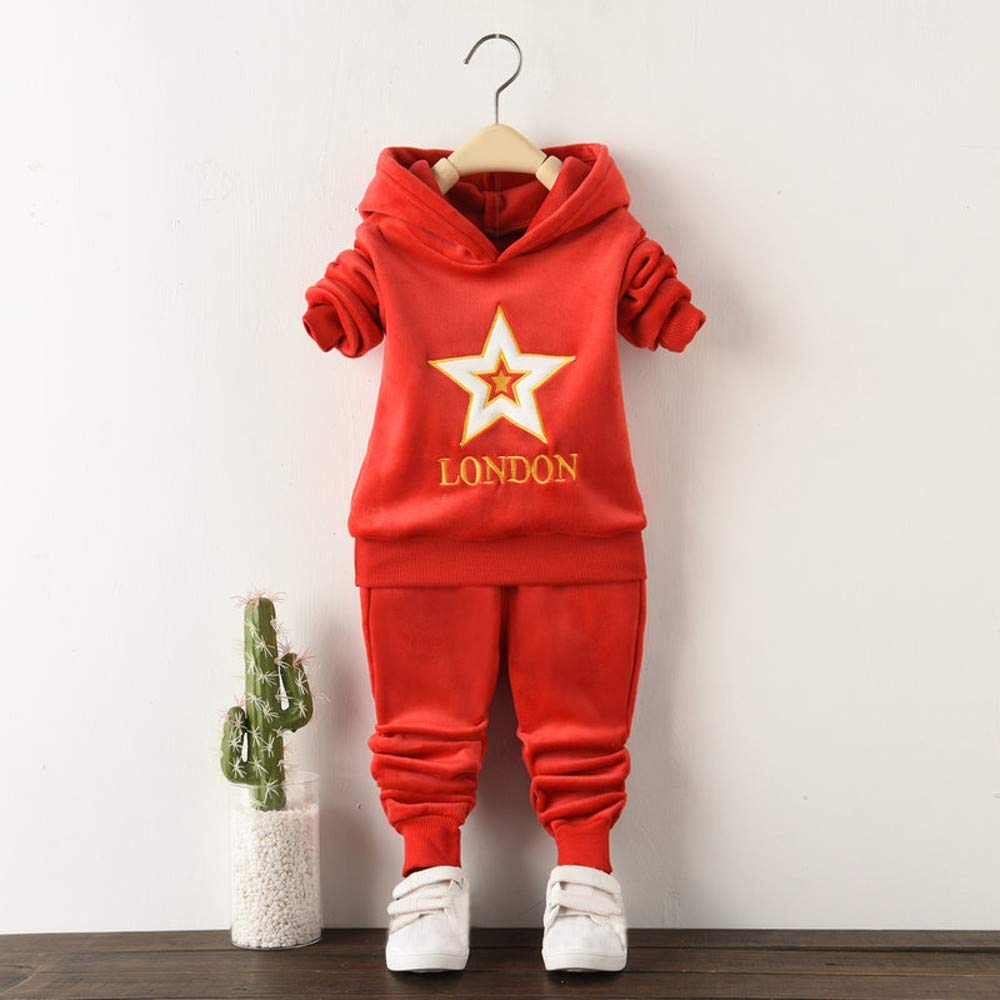 Toddler Baby Clothing Set Warm Hooded Pullover Top+Pants Set Outfit