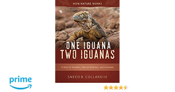 One Iguana Two Iguanas A Story Of Accident Natural Selection And