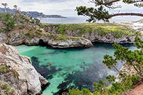 Carmel, California - Point Lobos State Natural Reserve - Photography A-93141 (9x12 Fine Art Print, Home Wall Decor Artwork Poster)