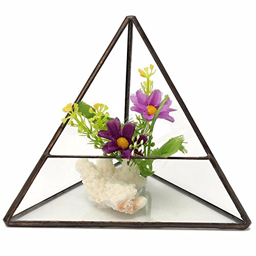 Glass Geometric Terrarium Box Flower Pot Plant Planter Glass Vase (Glisten Finishing Spray)