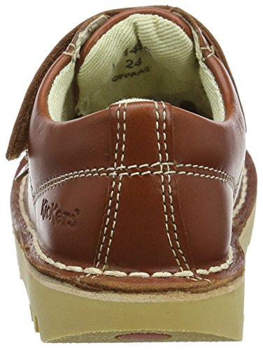 Vel bébé Dark Lo Marron garçon Kickers Tan Baskets 6qvxw