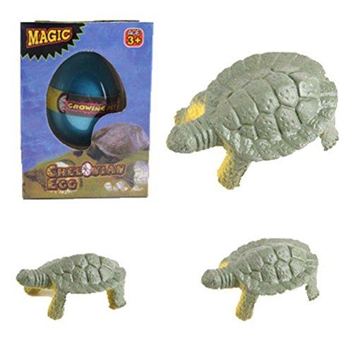 Botrong Water Hatching Egg Box Large Expansion Animal Egg Kids Educational Toy - Pheasant Mall