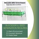 Window Garden Seed Starting Kit – Complete