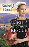 The Amish Widow's Rescue (Love and Promises)