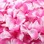 Anboo-Beautiful-1000pcs-Silk-Rose-Petals-Artificial-Flower-Wedding-Favor-Bridal-Shower-Aisle-Vase-Decor-Confetti
