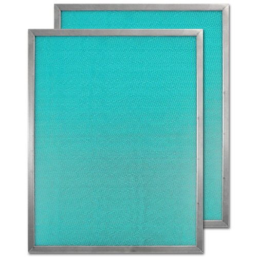 Honeywell 50000293-002 Post Filter (Pack of 2)