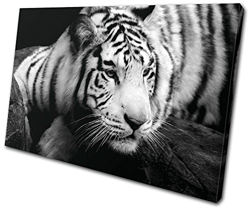 Tiger 135 - Bold Bloc Design - Animals Tiger - 135x90cm Canvas Art Print Box Framed Picture Wall Hanging - Hand Made In The UK - Framed And Ready To Hang