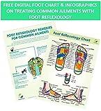 (New) TheraFlow Foot Massager Roller - Plantar