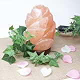 Genuine Himalayan Rose Hand Crafted Rock Salt Lamp Vitamin of the Air with UL- approved Cord, Dimmer Switch and Bulb - Rose