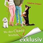 Wo das Chaos hinfällt | Sandra Grauer