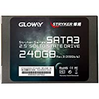 Gloway 240GB SSD Drive SATA III Internal Solid State Drive 3 Years Warranty MLC with Cache