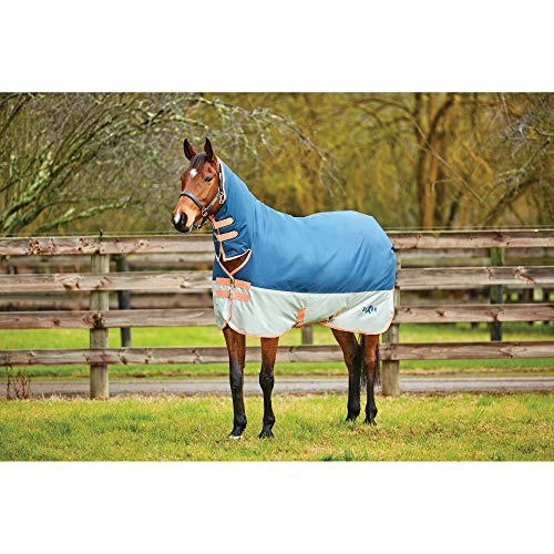 Saxon 600D Combo Neck Heavy IV Turnout Rug (6ft) (Dark Blue/Pebble/Orange) (Saxon 600d Turnout Sheet)