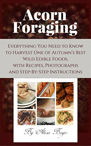Acorn Foraging: Everything You Need to Know to Harvest One of Autumn's Best Wild Edible Foods, with Recipes, Photographs and Step-By-Step Instructions by [Bayer, Alicia]