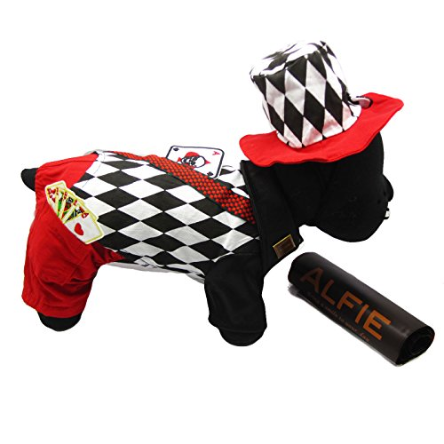 Alfie Pet by Petoga Couture - Aldis Magician Costume - Size: XL (Fancy Dress Magician)