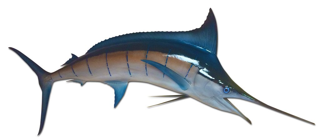 89'' Blue Marlin Half Sided Fish Mount Replica, Affordable Coastal Decor - Indoors Or Outside