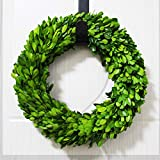 Tradingsmith Preserved Boxwood Wreath 12 in