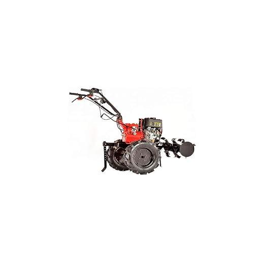 Campeon - Motocultor térmica TM 900d - Motor 4 tiempos D350 - 349 ...