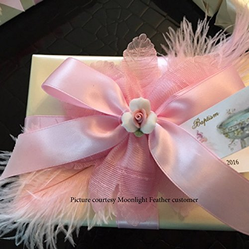 1/2 Lb - 8-10'' Baby Pink Wholesale Ostrich Drab Feathers (Bulk) Party Centerpiece Wedding Gatsby | Moonlight Feather by Moonlight Feather | USA SELLER (Image #8)