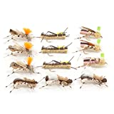 Trout Fly Assortment - Foam Body High Visibility Grasshopper Dry Fly Collection - 1 Dozen Flies - Hook Size 10 - Fly Fishing Hopper Dropper