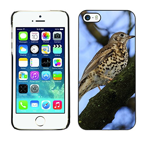 Premio Sottile Slim Cassa Custodia Case Cover Shell // F00028578 oiseau tacheté // Apple iPhone 5 5S 5G