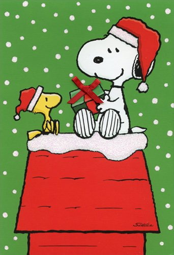 Snoopy And Woodstock Christmas.Amazon Com Snoopy Woodstock Gift Exchange Box Of 16