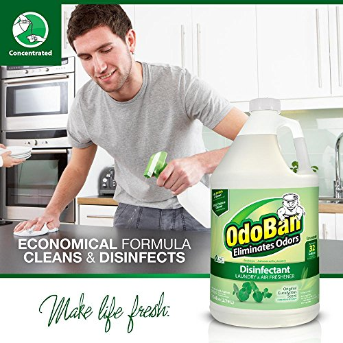 OdoBan Disinfectant Odor Eliminator and All Purpose Cleaner Concentrate, 5 Gal Scent Assortment by OdoBan (Image #6)