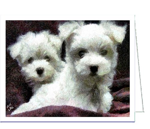 (Maltese Pair - Blank Note Cards - Set of 6 with Envelopes by DoggyLips)