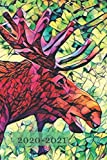 Cute Stained Glass Effect Bull Moose Green Animal Lover    25  Month Weekly Planner Dated Calendar for Women & Men: 2 years plus December To-Do ... + Dec 2019 25 months Weekly Planner Book)