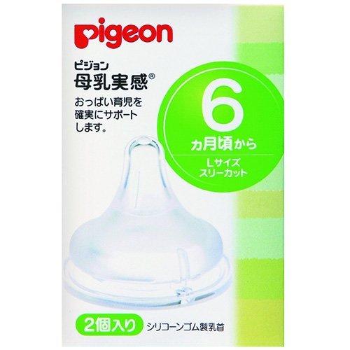Pigeon Bottle - 7