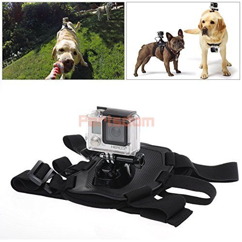 Fetch Harness Chest Accessories Camera