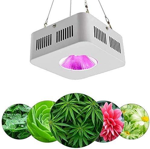 LMDH Planta de 100W LED Crece la luz de Espectro Completo COB Integrado hidropónica luz de la lámpara de la Planta, con Planta de luz infrarroja UV for la Flor de la Planta de Interior