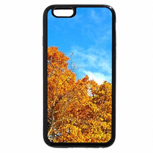 iPhone 6S / iPhone 6 Case (Black) Autumn Tree Tops