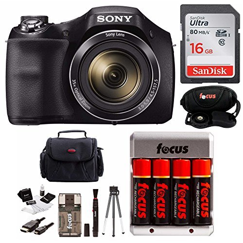 Shot Digital Camera Rechargeable Battery - Sony DSC-H300 Digital Camera w/Rechargeable AA Batteries &16GB SDHC Acc Bundle