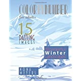 Color By Number For Adults: Wonderful Winter Landscapes