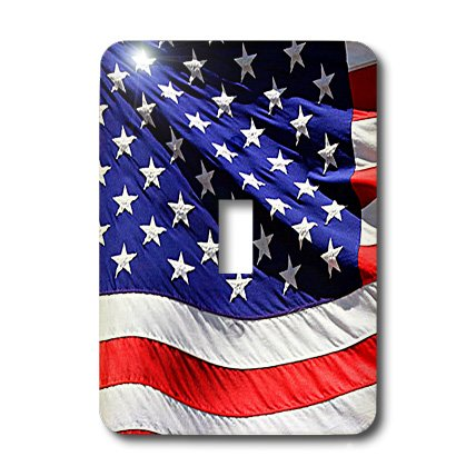(3dRose lsp_21652_1 American Flag Single Toggle Switch )