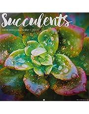 Succulents 2019 Wall Calendar
