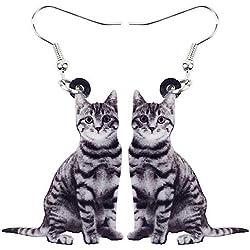 HCBYJ Pendientes de Gota Acrílico Precioso Gato Kitty Cuelga Los Pendientes Largos Grandes Joyas Largas para Niñas Damas Animales Niños Accesorios