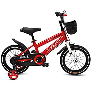 אופני Phoenix Kaku