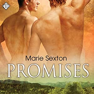 Promises Audiobook