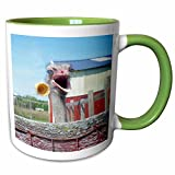 3dRose Sandy Mertens Ostrich Designs - What No Ice Cream Ostrich - 11oz Two-Tone Green Mug (mug_6060_7)