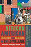 African American Children and Families in Child Welfare : Cultural Adaptation of Services, Denby, Ramona and Curtis, Carla M., 0231131844