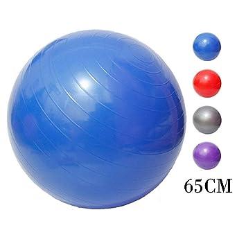 1pcs pelota de pilates, pelota de yoga de 65 cm, pelota de ...