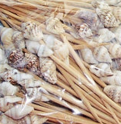500-Seashell-Toothpicks-Beach-Weddingtiki-BarRestaurant